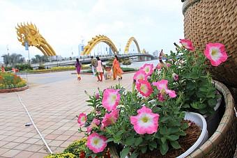 Tour TP.Hồ Chí Minh – Đà Nẵng Tết Âm Lịch 2018