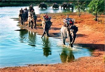 Tour Tây Nguyên 1 Ngày - Buôn Đôn - Thác Dray Nur - Buôn Kotam