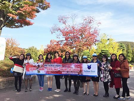 SEOUL – NAMI – EVERLAND – ĐẢO JEJU 6n5d bay hàng không Hàn Quốc