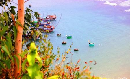 Tour Trải Nghiệm Xứ Hoa Vàng Cỏ Xanh Từ Hồ Chí Minh