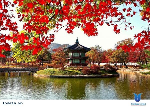 Đến Hàn Quốc – Đừng bỏ lỡ 3 địa điểm yên bình giữa lòng thành phố. - Ảnh 3