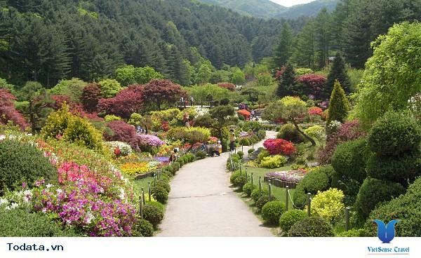 Đến Hàn Quốc – Đừng bỏ lỡ 3 địa điểm yên bình giữa lòng thành phố. - Ảnh 4