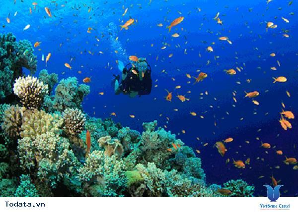 Đừng bỏ lỡ những kinh nghiệm này trước khi đi du lịch Maldives nhé - Ảnh 5