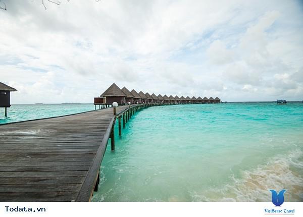 Đừng bỏ lỡ những kinh nghiệm này trước khi đi du lịch Maldives nhé - Ảnh 3