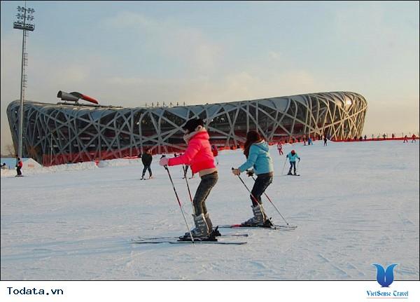 Sân vận động tổ chim – Kiến trúc Âu Á giữa lòng Bắc Kinh - Ảnh 4