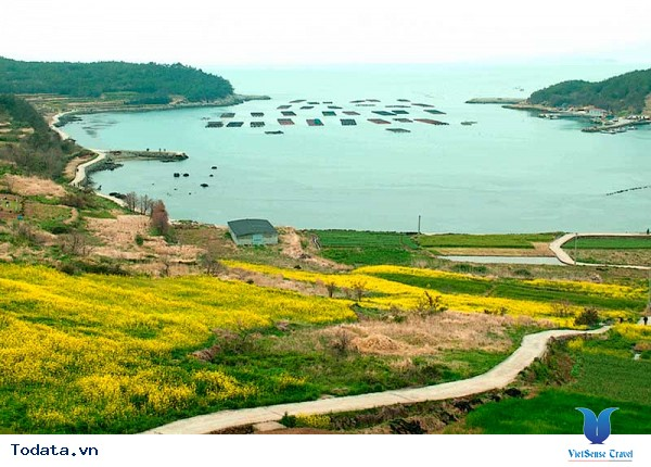 Thăm quan một nơi tuyệt vời tại Hàn Quốc - Ảnh 3