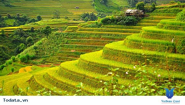 Vẻ Đẹp Trên Những Cung Đường Lúa Vàng Đông - Tây Bắc - Ảnh 5