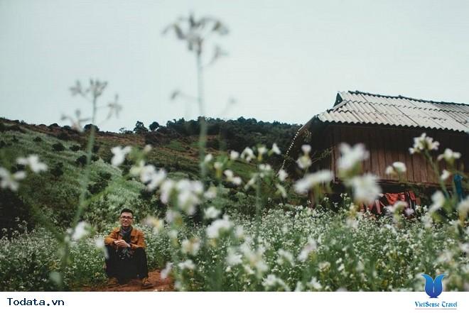 Xách Balo Lên Mộc Châu Ngắm Hoa Cải Trắng Tinh Khôi Trong Cái Lạnh Đầu Đông - Ảnh 8