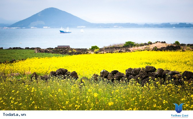 Mộng mơ khúc tình ca bốn mùa trên đảo Nami - Ảnh 5