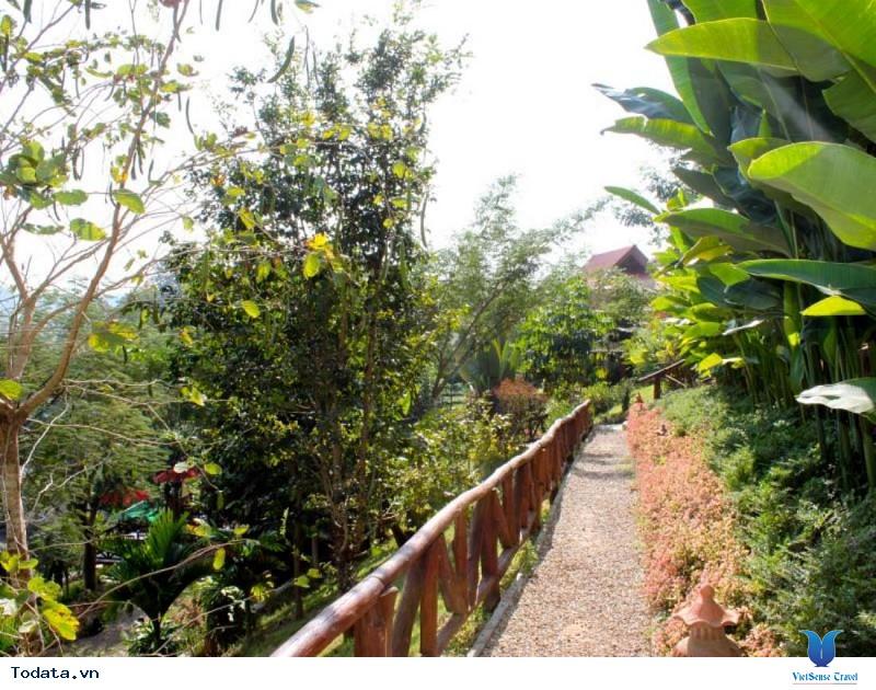 5 vùng đất tuyệt đẹp ở phía Bắc Thái Lan mà bạn nên đặt chân tới - Ảnh 4