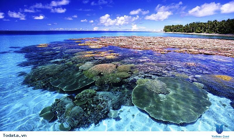 Coral Island – Hòn đảo san hô mê hồn du khách - Ảnh 1