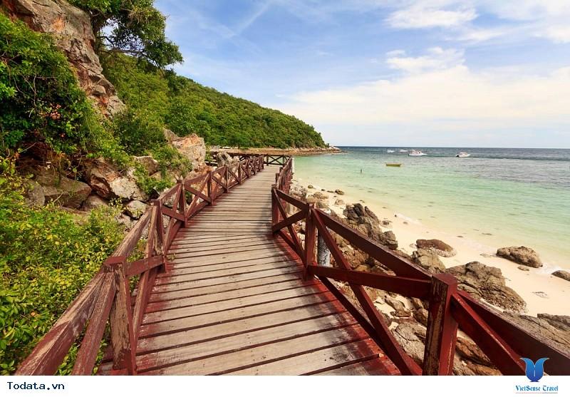 Coral Island – Hòn đảo san hô mê hồn du khách - Ảnh 2