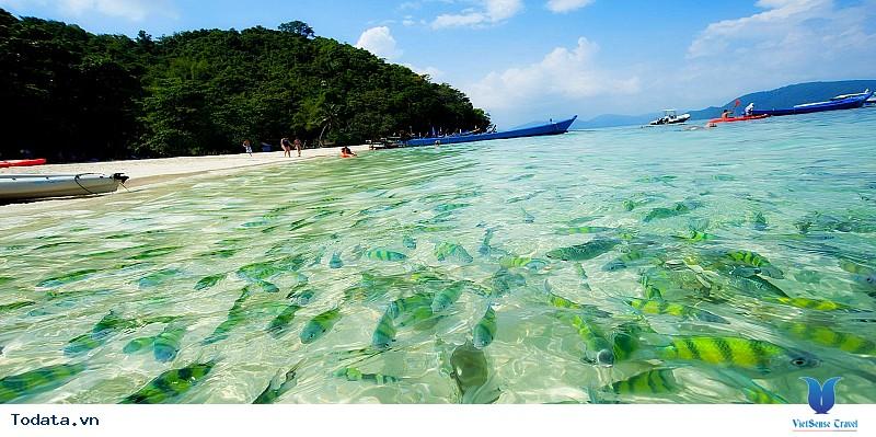 Coral Island – Hòn đảo san hô mê hồn du khách - Ảnh 4