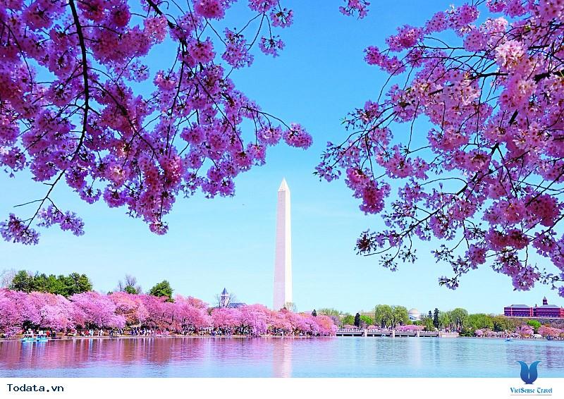 Hành Trình Bờ Đông Nước Mỹ New York - Philadelphia - Washington D.C - Ảnh 3