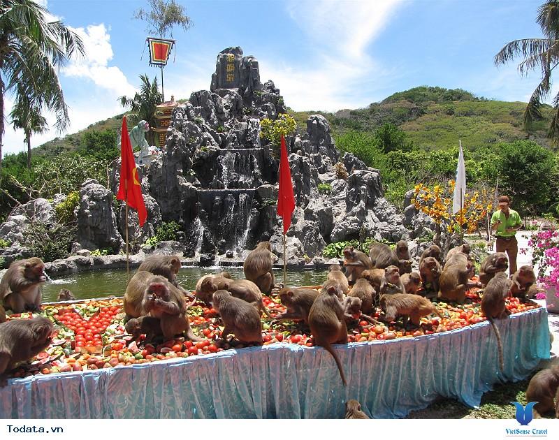 Hình Ảnh Đảo Khỉ Nha Trang - Ảnh 4