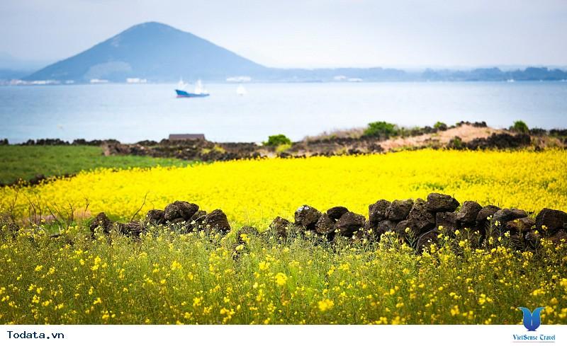 Khám phá nét đẹp của những hòn đảo đáng sống nhất Hàn Quốc - Ảnh 1