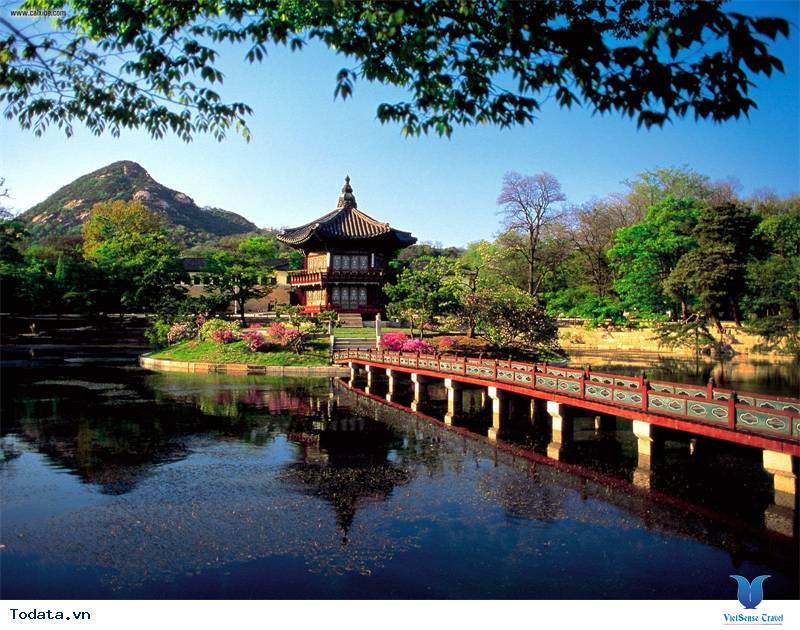 Những điều cần tránh khi đi du lịch Hàn Quốc - Ảnh 5