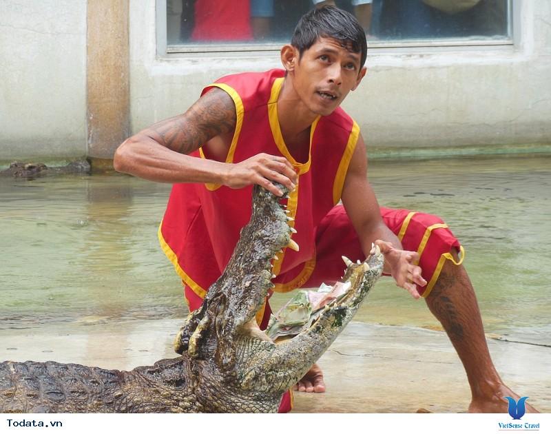 """Say lòng khám phá Thái Lan """"đêm không ngủ"""" với Vietsense Travel - Ảnh 1"""