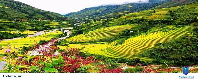 Thung Lũng Mường Hoa Sapa - Ảnh 1