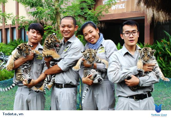 Đến Phú Quốc thăm vườn thú bán hoang dã đầu tiên tại Việt Nam - Ảnh 4