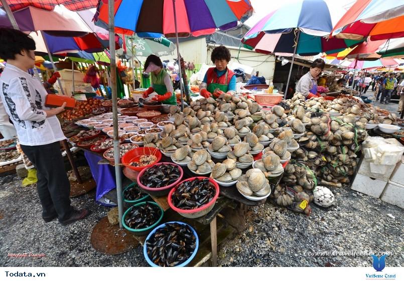 Du lịch Hàn Quốc ghé thăm chợ hải sản tại Busan - Ảnh 2