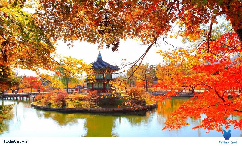 Lịch Khởi Hành Tour Du Lịch Hàn Quốc - Ảnh 1