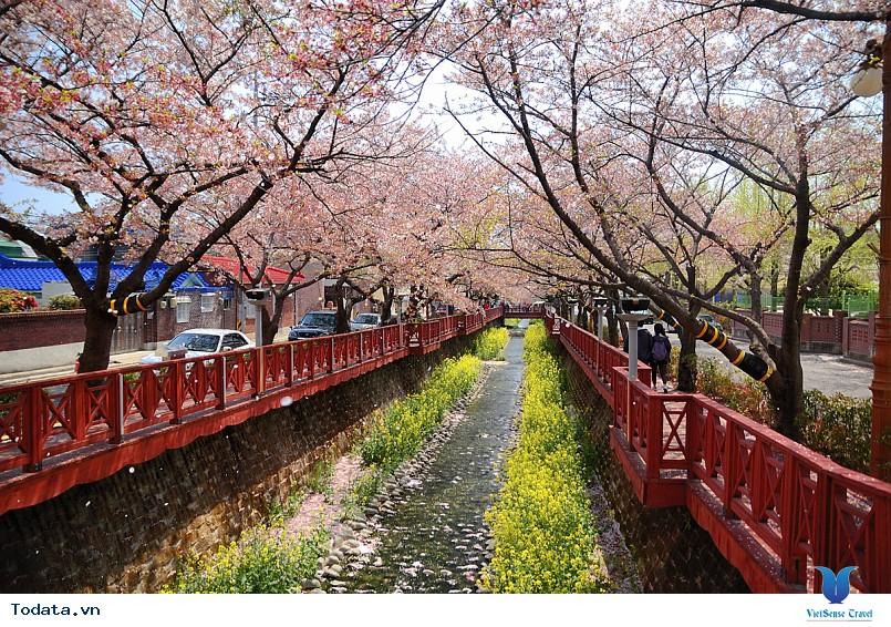 Những điểm du lịch hấp dẫn nhất của xứ sở Kim Chi - Ảnh 2