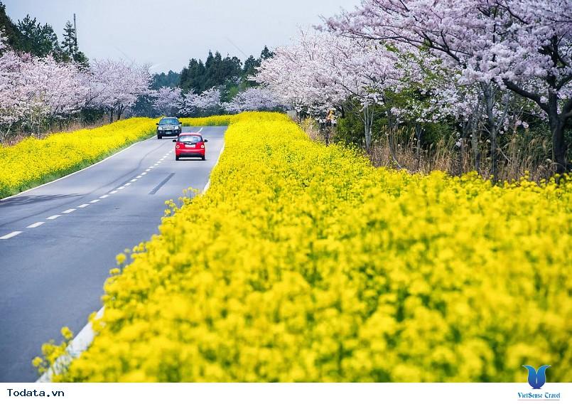 Những điểm du lịch hấp dẫn nhất của xứ sở Kim Chi - Ảnh 1