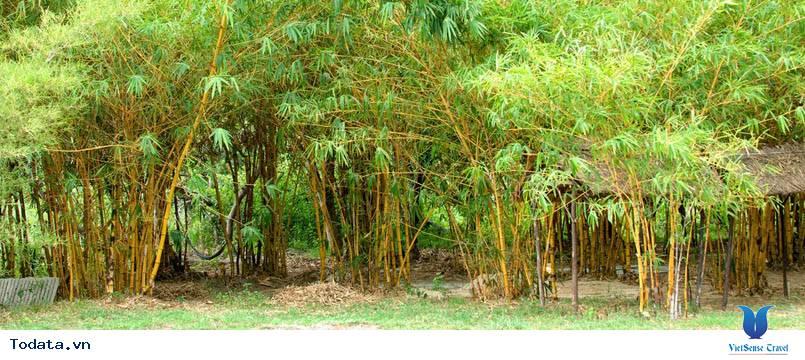 Say mê những ngôi làng cổ kính ẩn mình trong lòng Đà Nẵng hiện đại - Ảnh 2