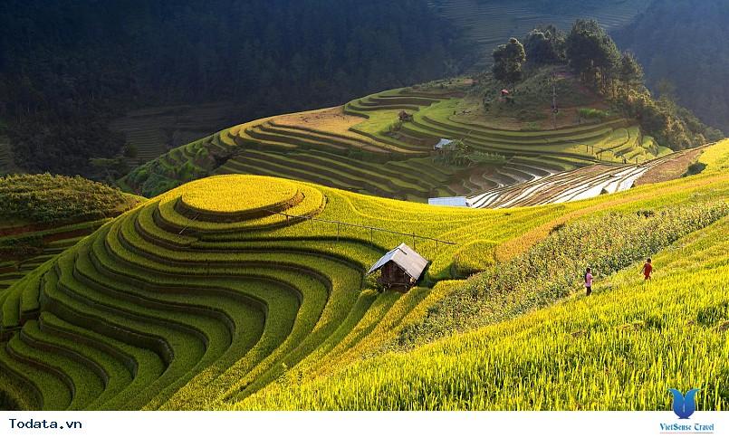 Vi vu cùng VietSense thưởng ngoạn Mù Cang Chải rực vàng trong mùa lúa chín - Ảnh 2