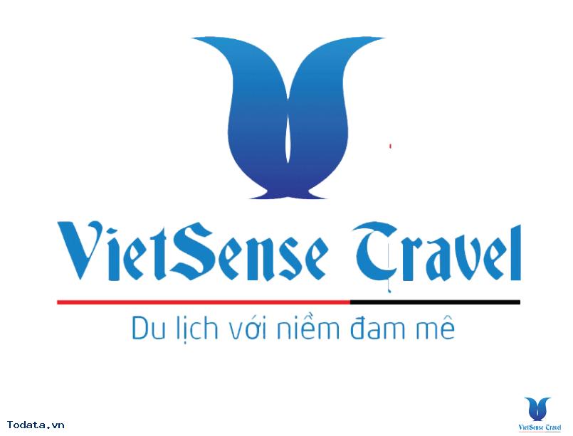 Logo Vietsense