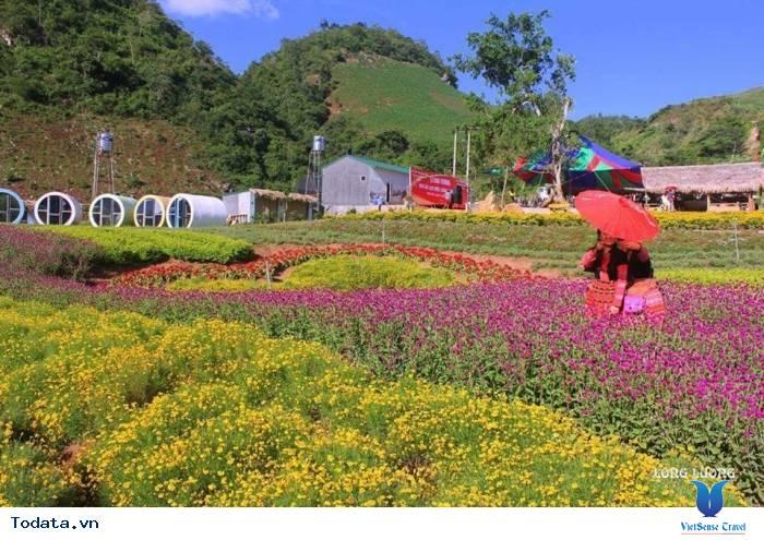 Happy Land Mộc Châu Thiên Đường Trên Cao Nguyên - Ảnh 2
