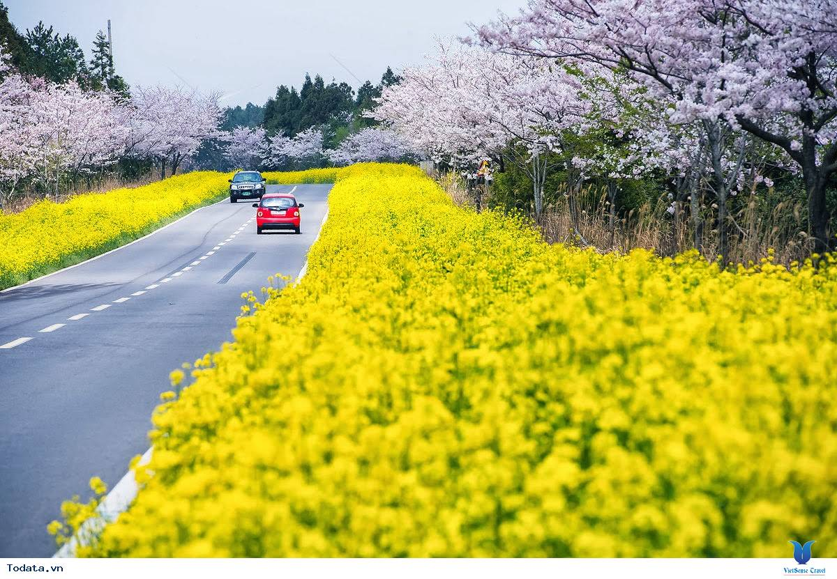 Những điểm du lịch hấp dẫn nhất của xứ sở Kim Chi
