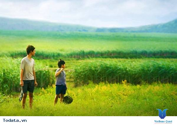 Trải Lòng Khám Phá Xứ Hoa Vàng Cỏ Xanh Cùng Vietsense Travel