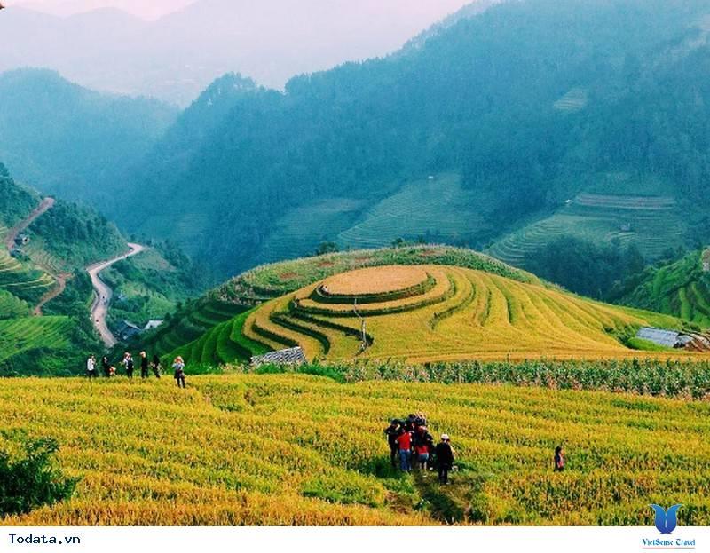 Vùng Núi Tây Bắc - Những Cung Đường Ngắm Mùa Lúa Vàng