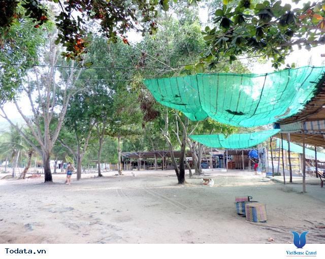 Bãi Dài Nha Trang - Vẻ Đẹp Hoang Sơ Một Vùng Biển - Ảnh 11