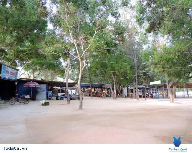 Bãi Dài Nha Trang - Vẻ Đẹp Hoang Sơ Một Vùng Biển - Ảnh 10