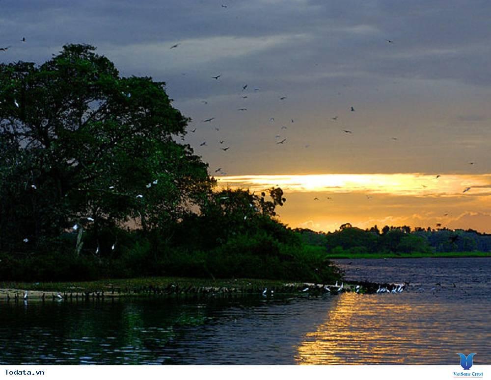 Công viên ngập mặn iSimangaliso - Ảnh 2