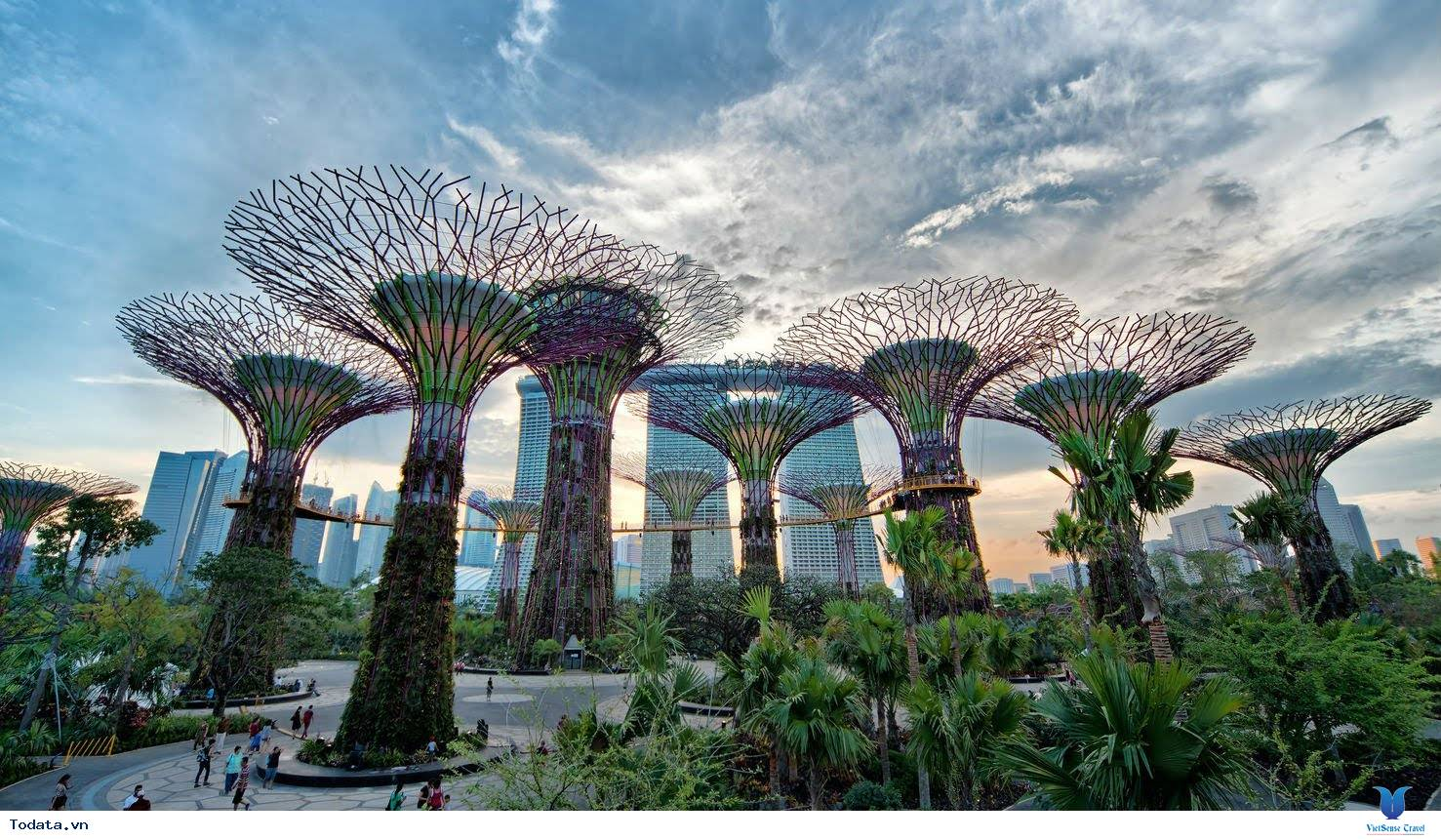 Gardens By The Bay- Khu Vườn Nhân Tạo Khổng Lồ Của Singapore - Ảnh 9