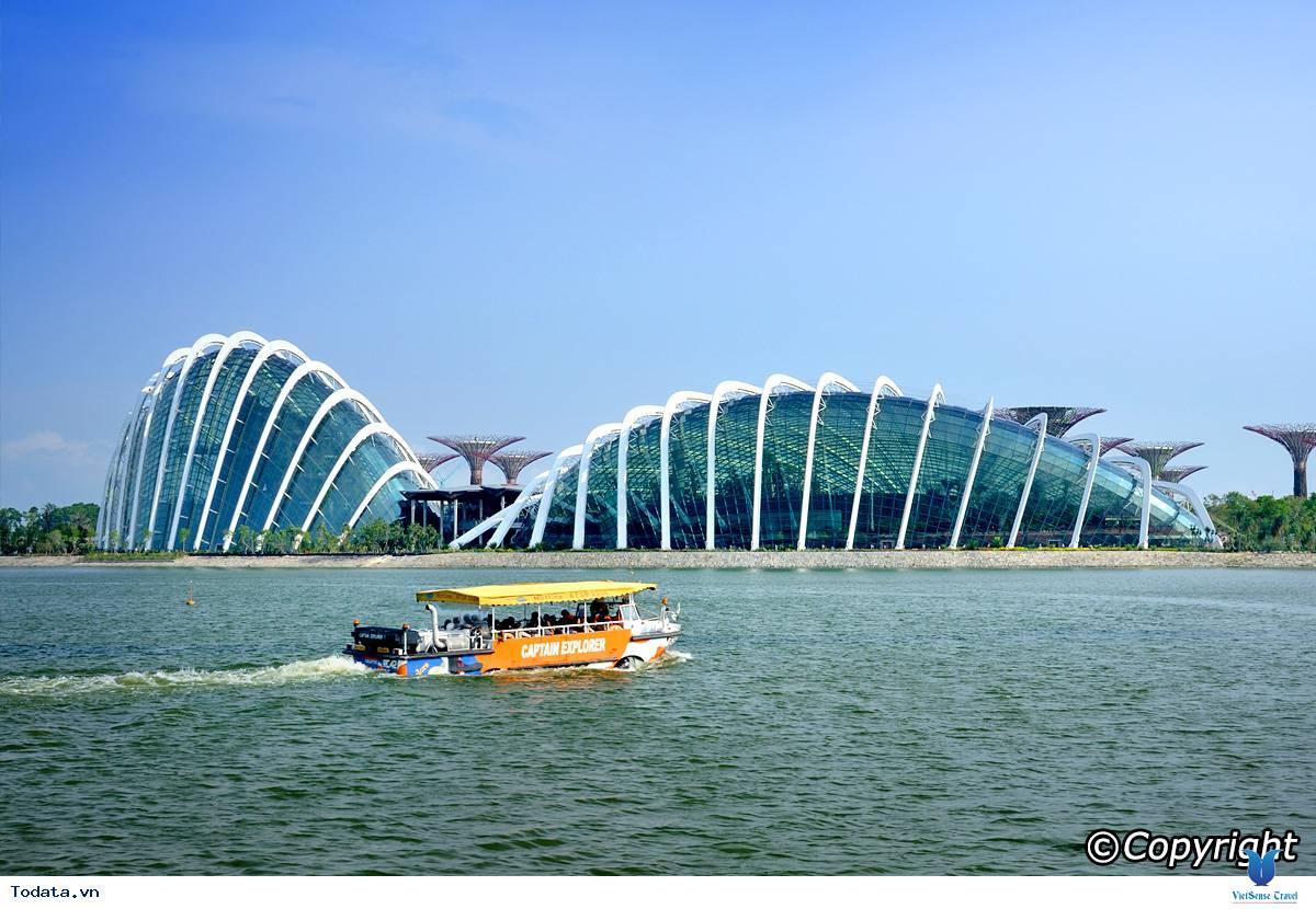 Gardens By The Bay- Khu Vườn Nhân Tạo Khổng Lồ Của Singapore - Ảnh 2