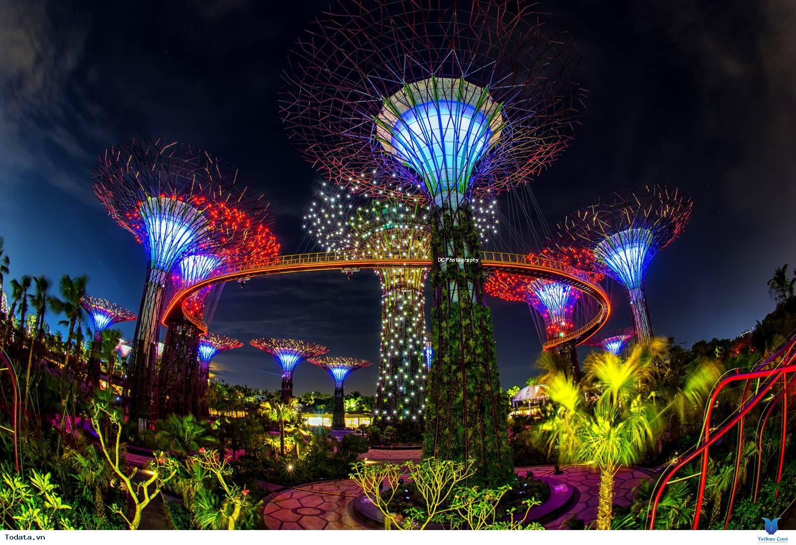 Gardens By The Bay- Khu Vườn Nhân Tạo Khổng Lồ Của Singapore - Ảnh 12