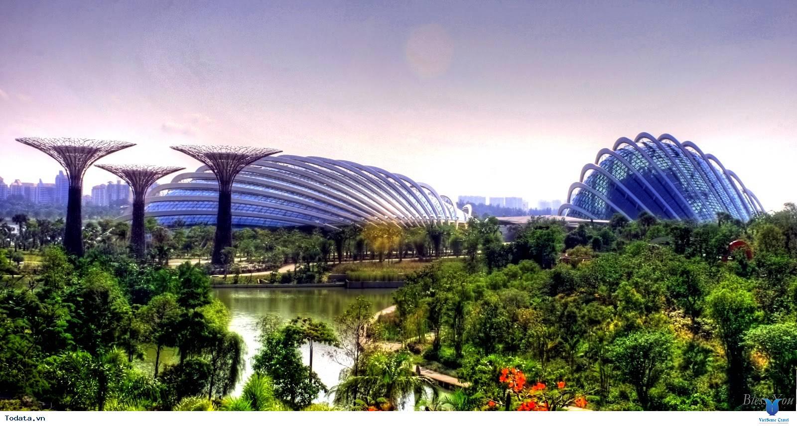 Gardens By The Bay- Khu Vườn Nhân Tạo Khổng Lồ Của Singapore - Ảnh 1