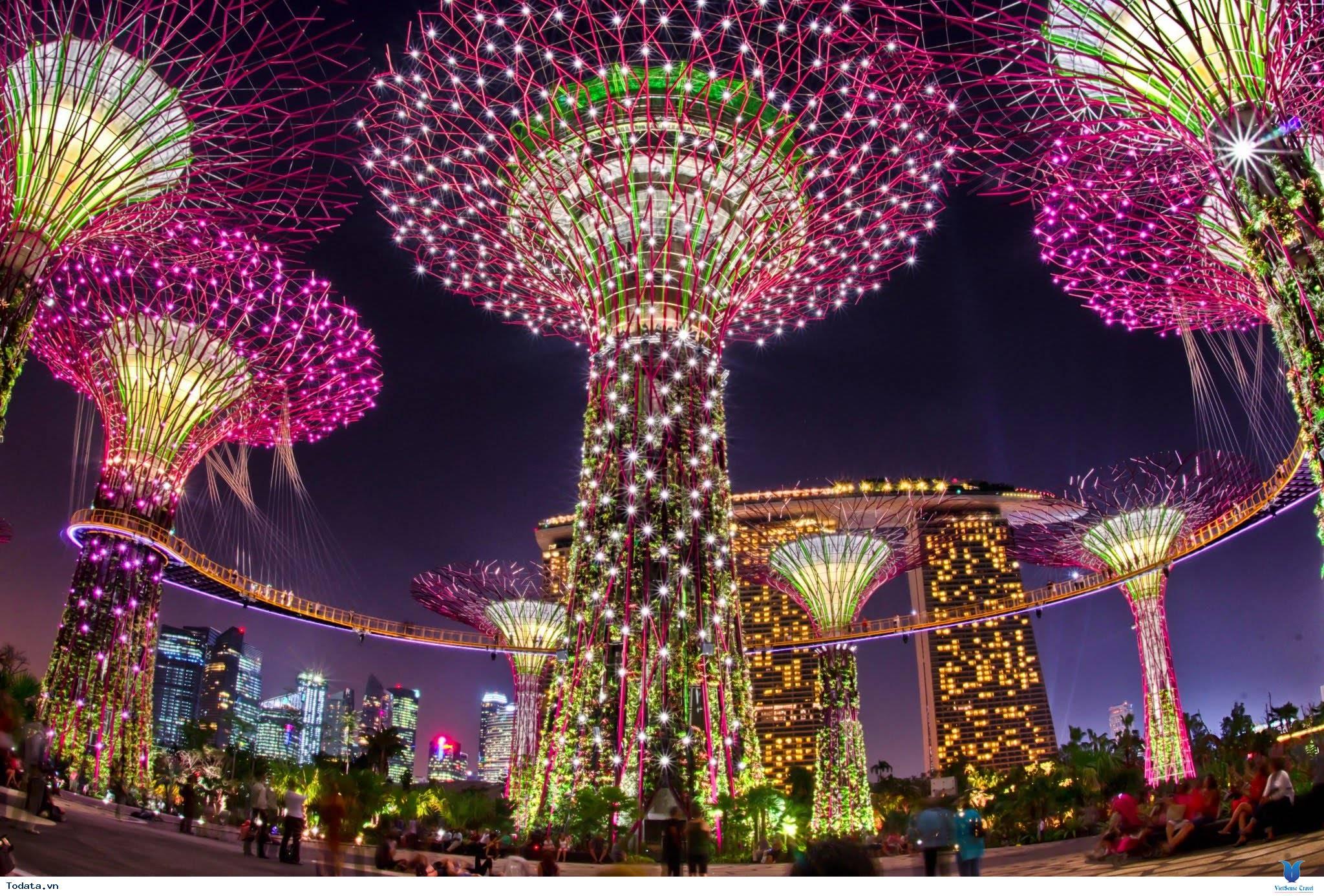 Gardens By The Bay- Khu Vườn Nhân Tạo Khổng Lồ Của Singapore - Ảnh 11
