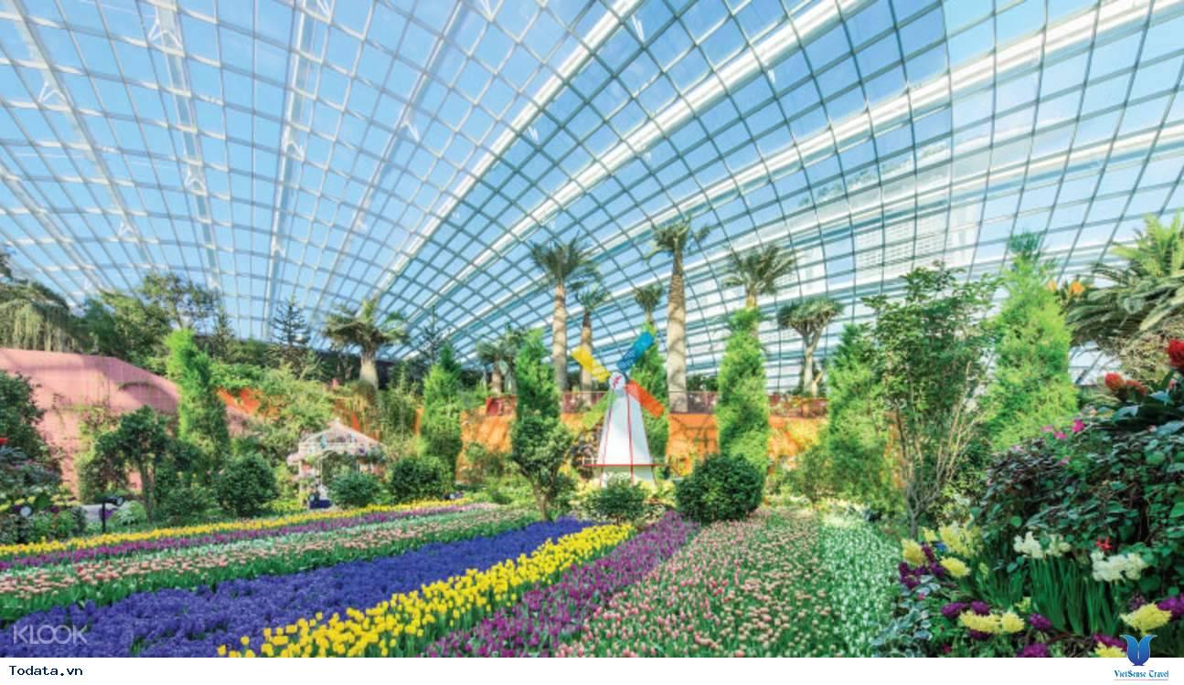 Gardens By The Bay- Khu Vườn Nhân Tạo Khổng Lồ Của Singapore - Ảnh 5