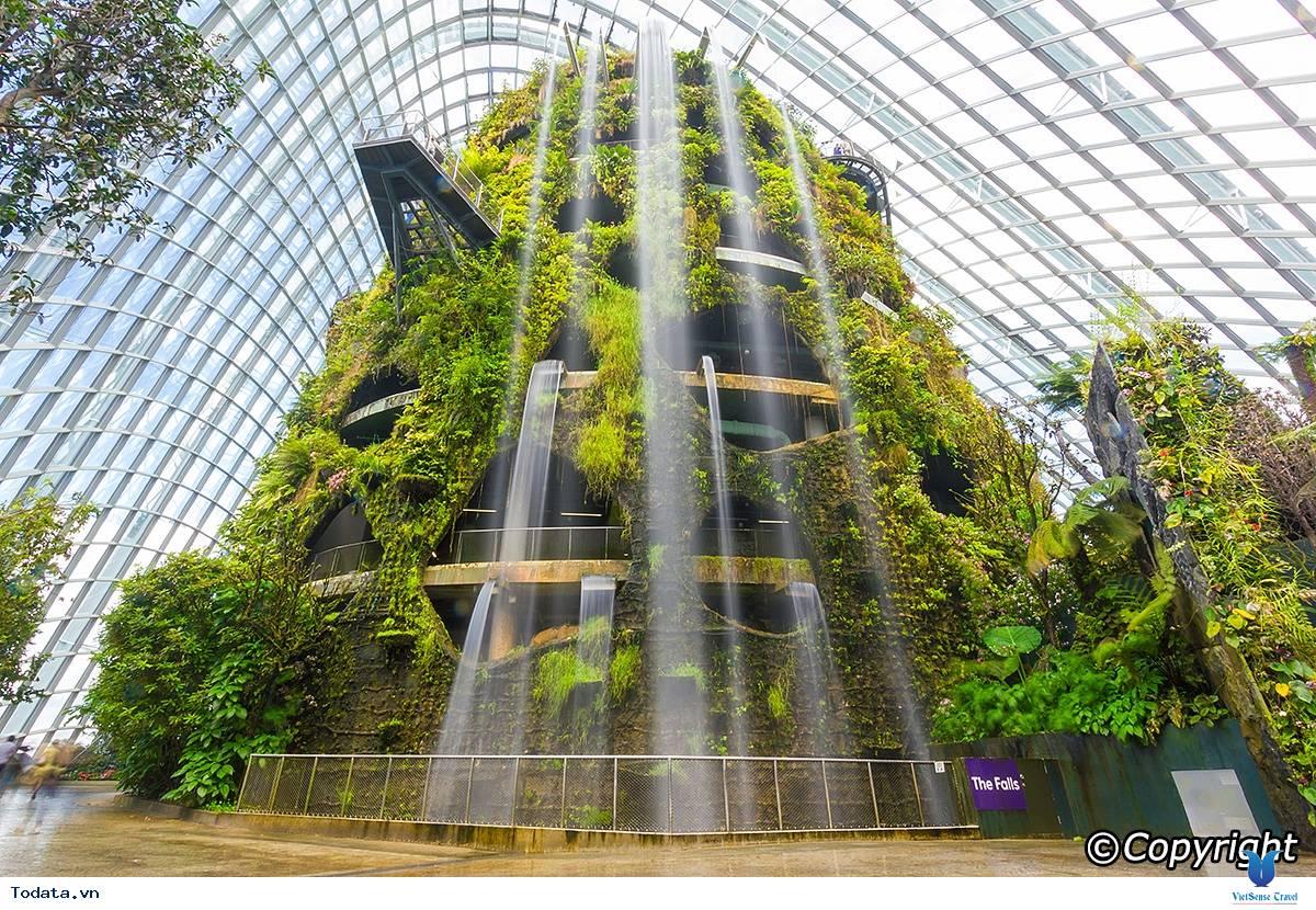 Gardens By The Bay- Khu Vườn Nhân Tạo Khổng Lồ Của Singapore - Ảnh 7