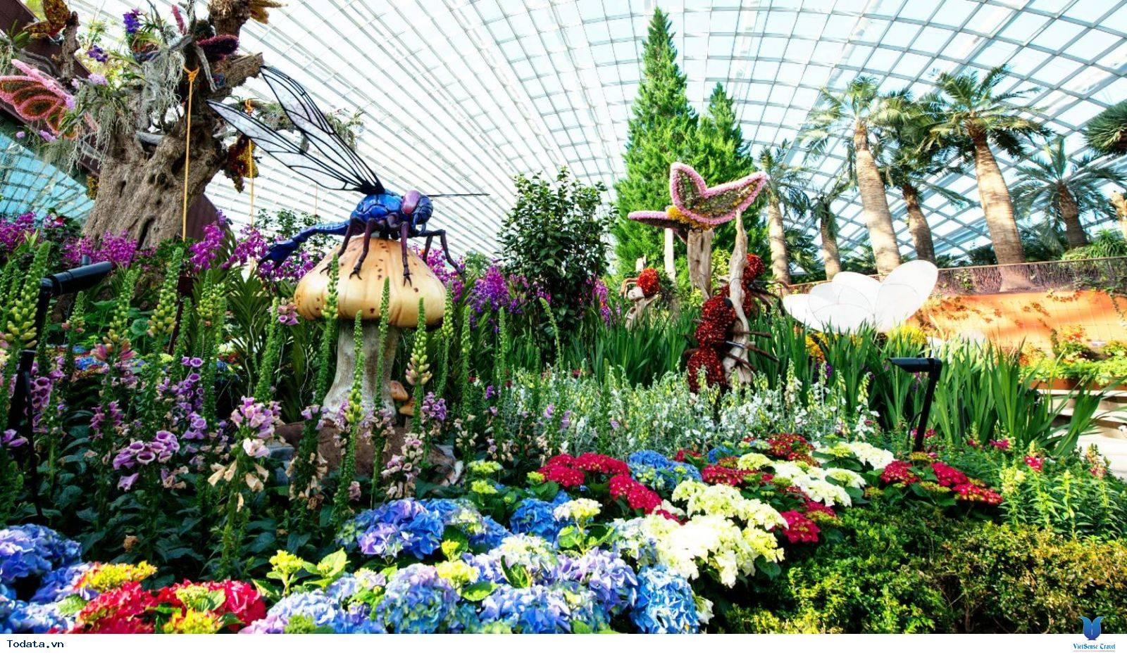 Gardens By The Bay- Khu Vườn Nhân Tạo Khổng Lồ Của Singapore - Ảnh 8