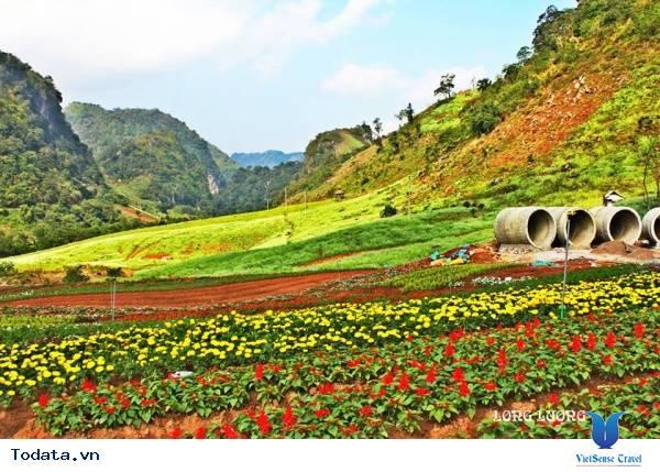 Happy Land Mộc Châu Thiên Đường Trên Cao Nguyên - Ảnh 3