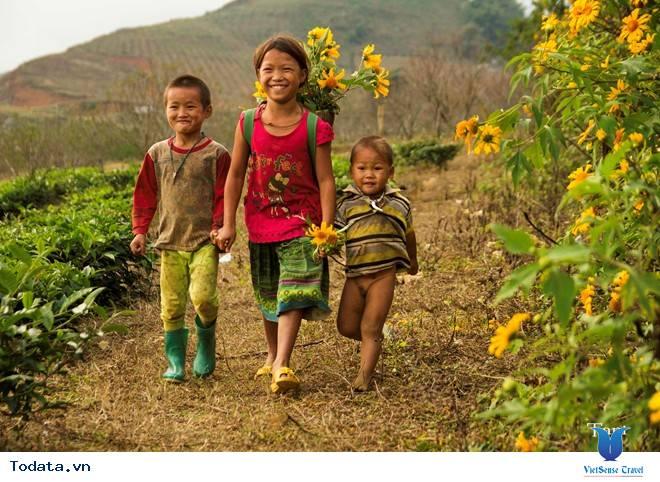 Hoa Cải Nở Trắng Đồi Mộc Châu Những Ngày Mùa Tháng 11 - Ảnh 6