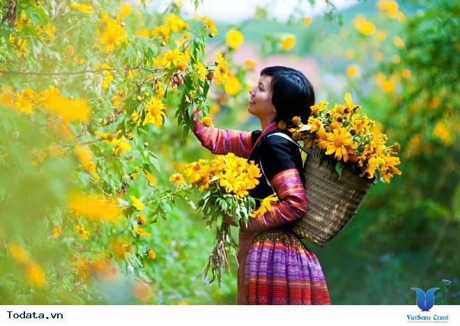 Hương Sắc Hoa Dã Quỳ Mộc Châu Say Đắm Ngày Thu Qua Đông Tới - Ảnh 7