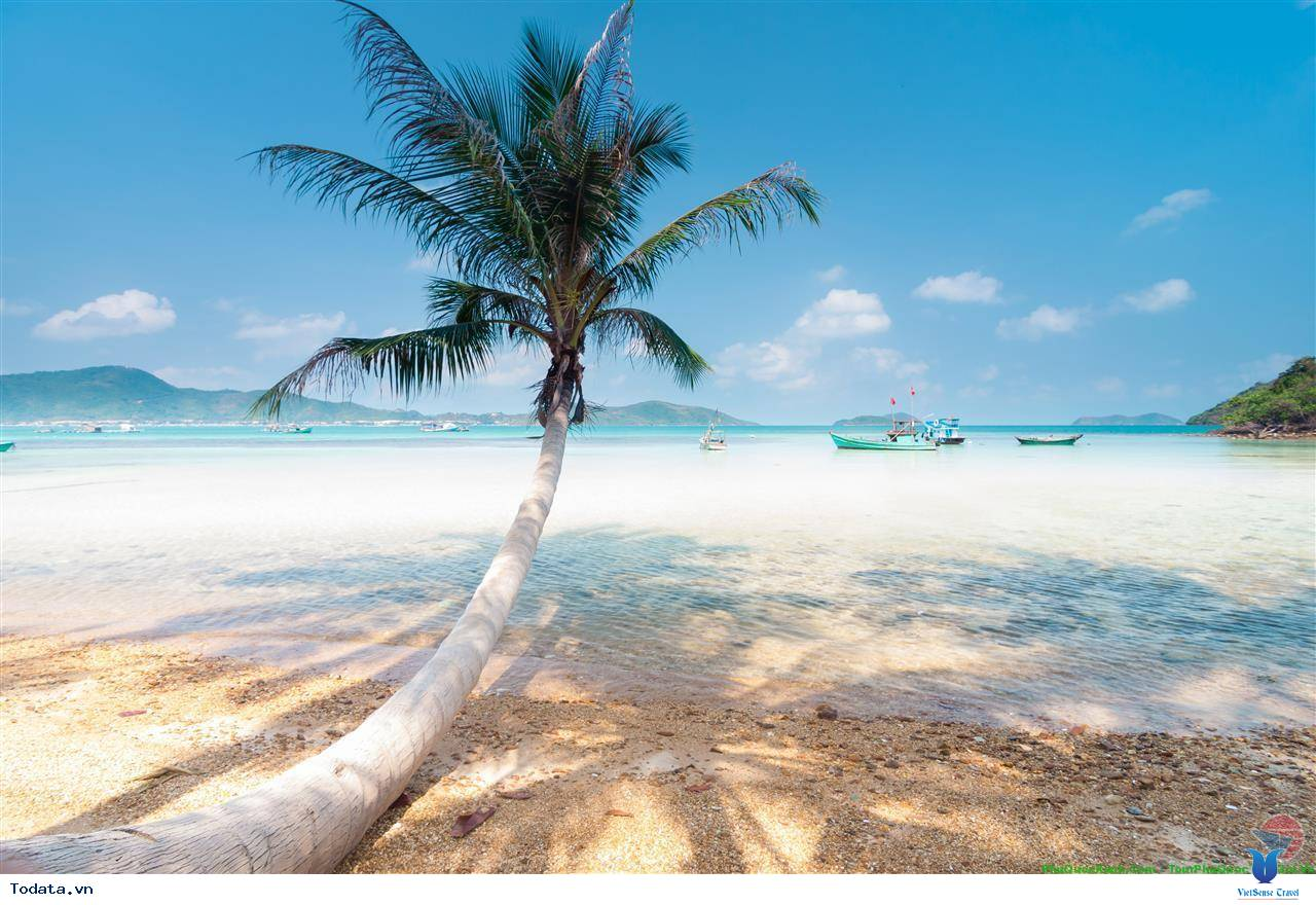 Khám Phá Bãi Sao- bãi biển đẹp nhất Việt Nam - Ảnh 2